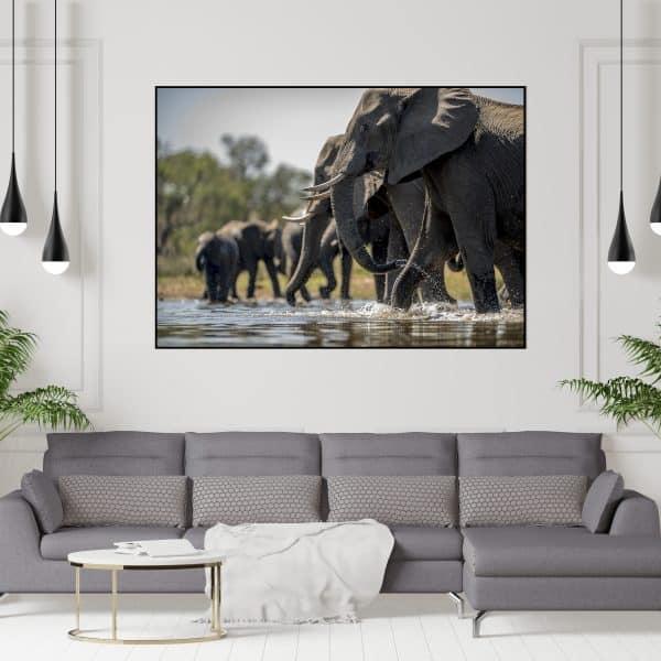 Tablou Canvas Elefanti
