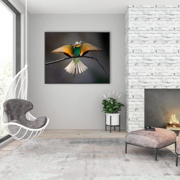 Tablou Canvas Colibri