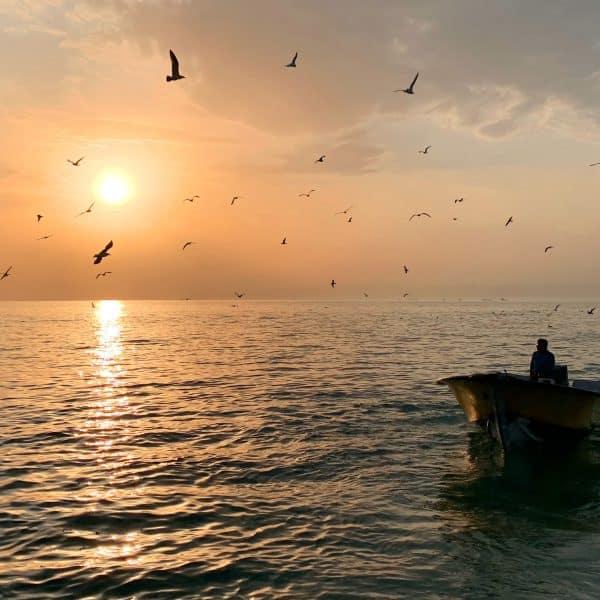 Tablou Canvas Pescar
