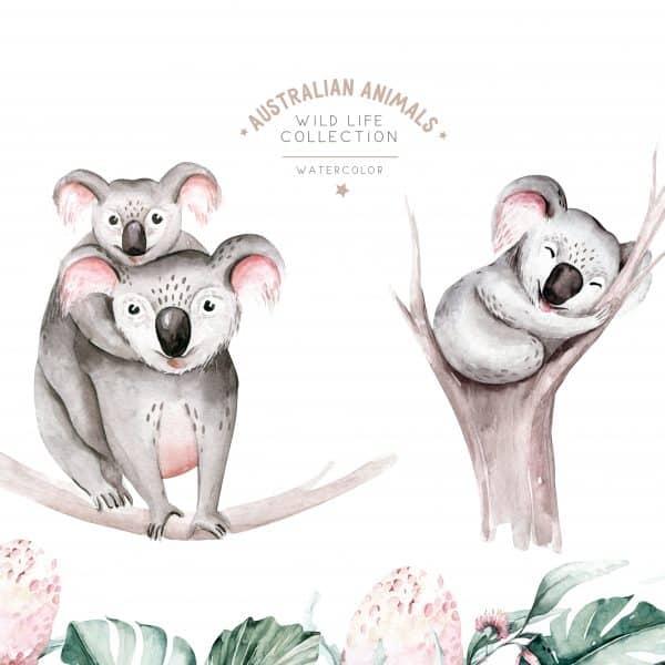 Tablou Copii Koala