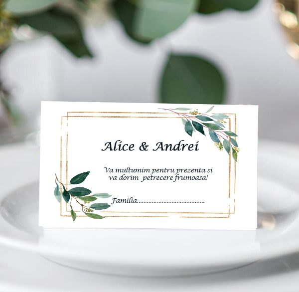 Plic bani de nunta Nature